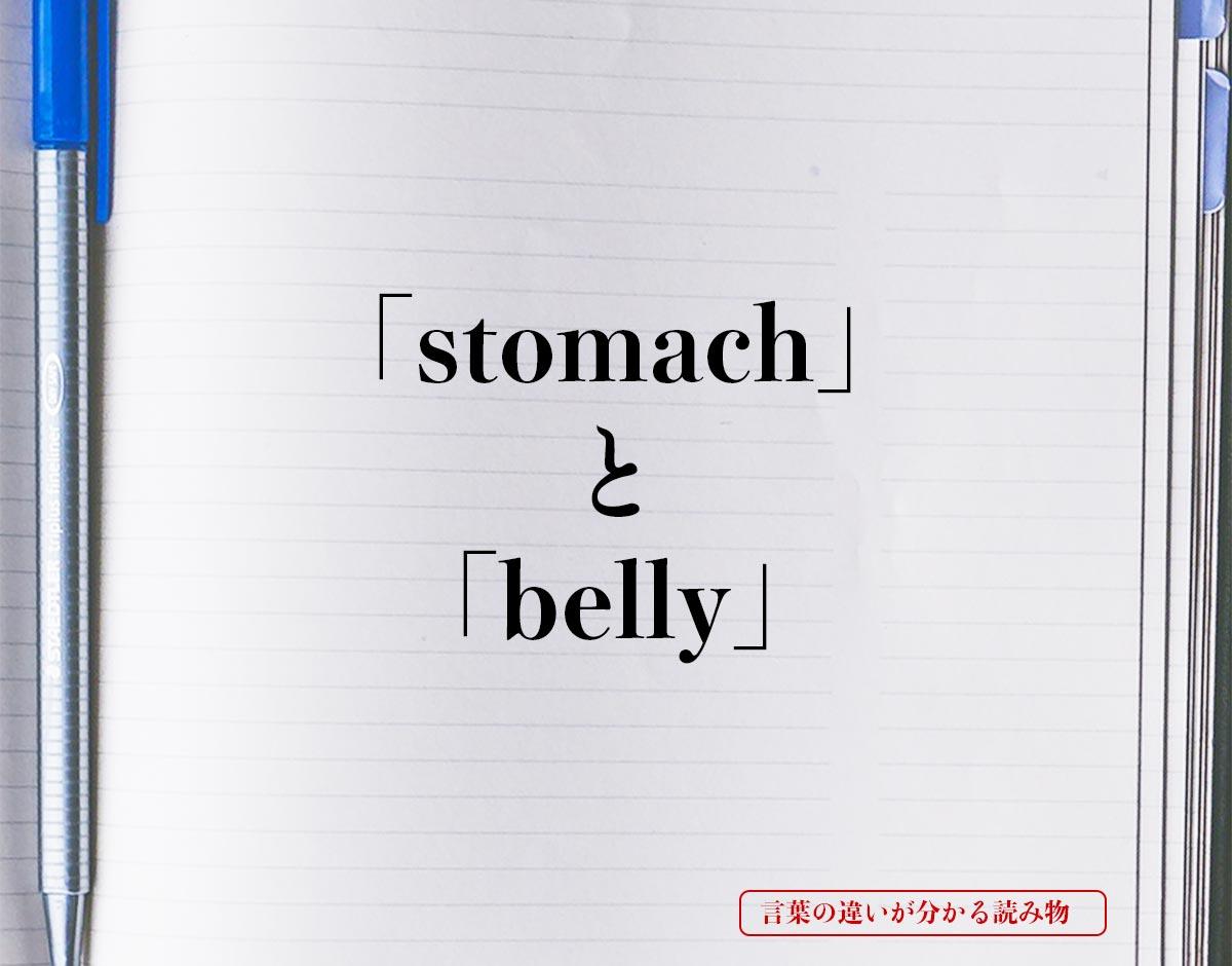 「stomach」と「belly」の違い