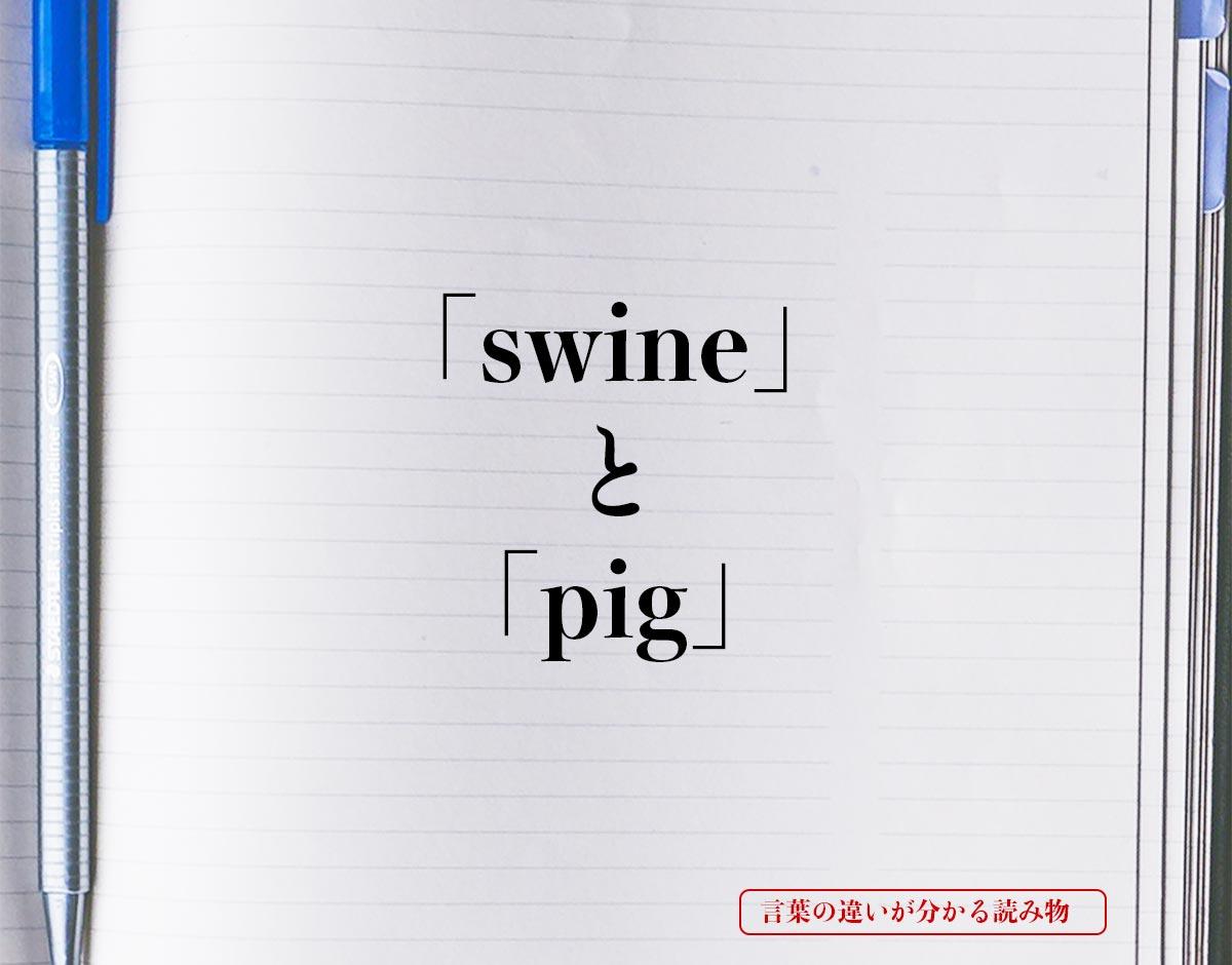 「swine」と「pig」の違い